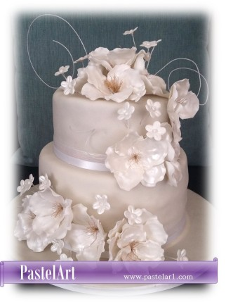 boda-perla